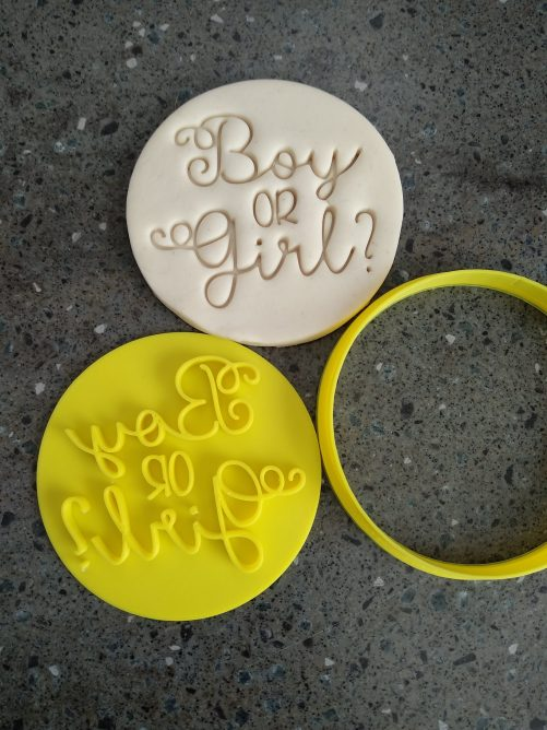 Boy or Girl? Gender Reveal Day Cookie Fondant Embosser Stamp & Cutter
