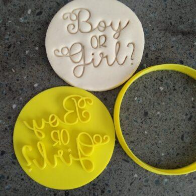 Boy or Girl? Gender Reveal Day Cookie Fondant Embosser Stamp & Cutter