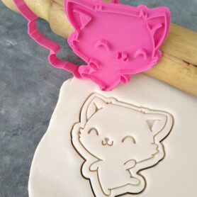 Cute Cat Cookie Fondant Embosser Imprint Stamp and Cookie Cutter