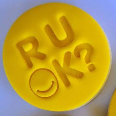 R U OK? Cookie Fondant Embosser Imprint Stamp and Cutter