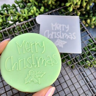 Merry Christmas with Mistletoe Fondant Cookie Stamp with Raised Detail Merry Christmas Pop stamp debosser outbosser stamp